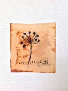 2105-Detail botaniclasIMG_6718